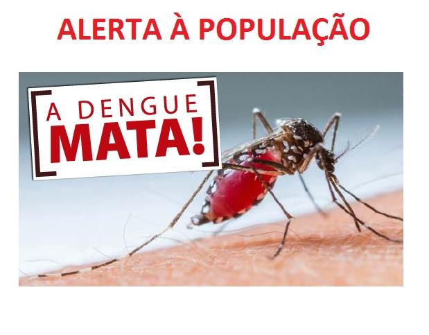 ALERTA À POPULAÇÃO – DENGUE MATA! | Prefeitura Municipal de Bom ...
